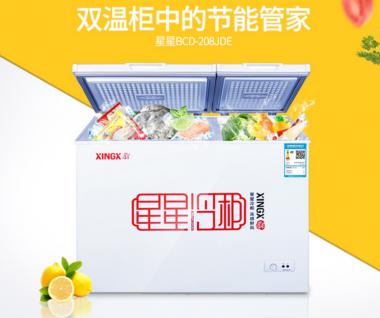 商用电器星星冷柜BCD-208JDE